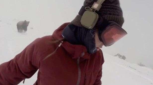 Video: Po bënte snowboard, por nga pas e ndiqte ariu