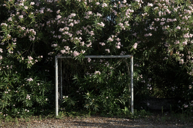 An overgrown football pitch on the Albanian island of Sazan.